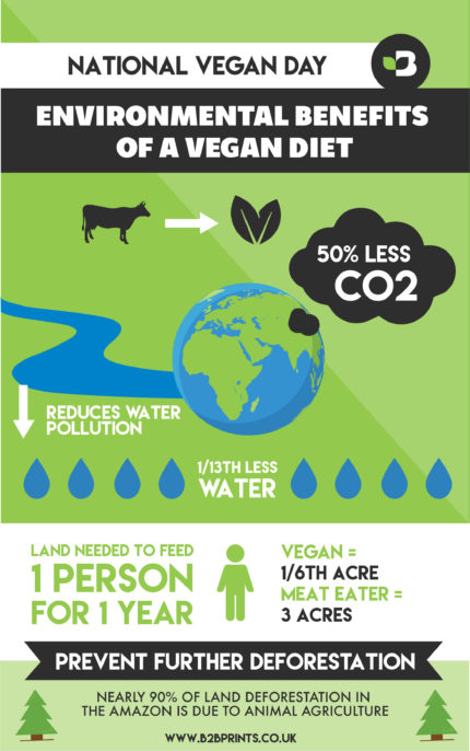 Vegan Infographic